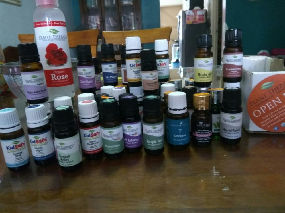Plant therapy Essential oil malaysia